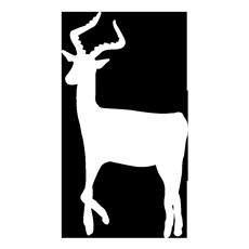 IWS_logotype-silhouette-sans-nom.png