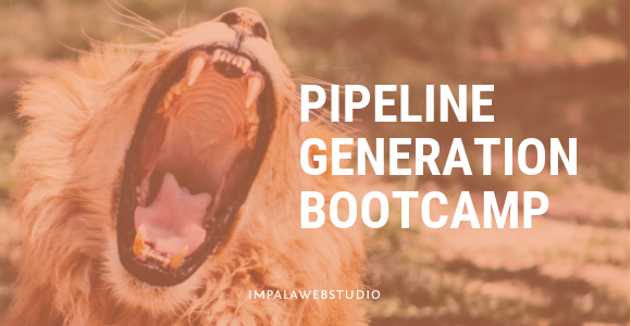 Un Impala devenu Lion en 8 semaines : mon expérience du Pipeline Generation Bootcamp d'Hubspot.